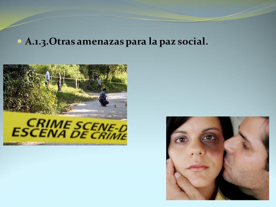 A.1.3.Otras amenazas para la paz social.
