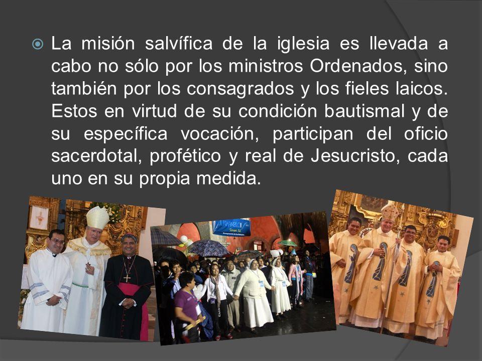 La misión salvífica de la iglesia es llevada a cabo no sólo por los ministros Ordenados, sino también por los consagrados y los fieles laicos.