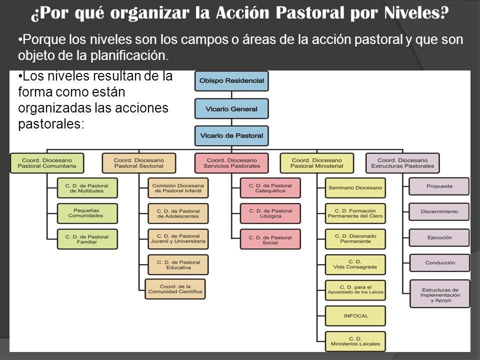 ¿Por qué organizar la Acción Pastoral por Niveles