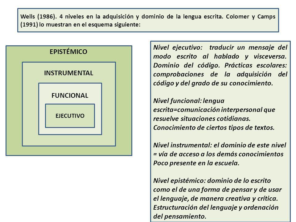 EPISTÉMICO INSTRUMENTAL FUNCIONAL