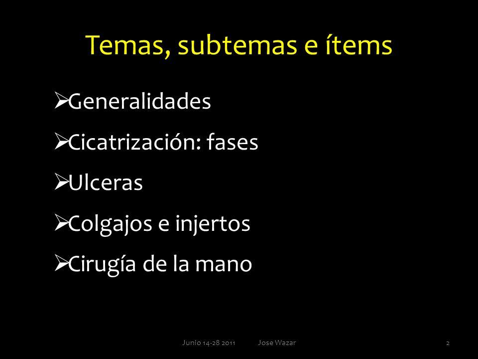 Temas, subtemas e ítems Generalidades Cicatrización: fases Ulceras