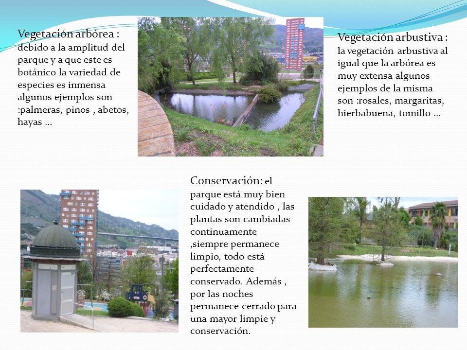 Vegetación arbórea : debido a la amplitud del parque y a que este es botánico la variedad de especies es inmensa algunos ejemplos son :palmeras, pinos , abetos, hayas …