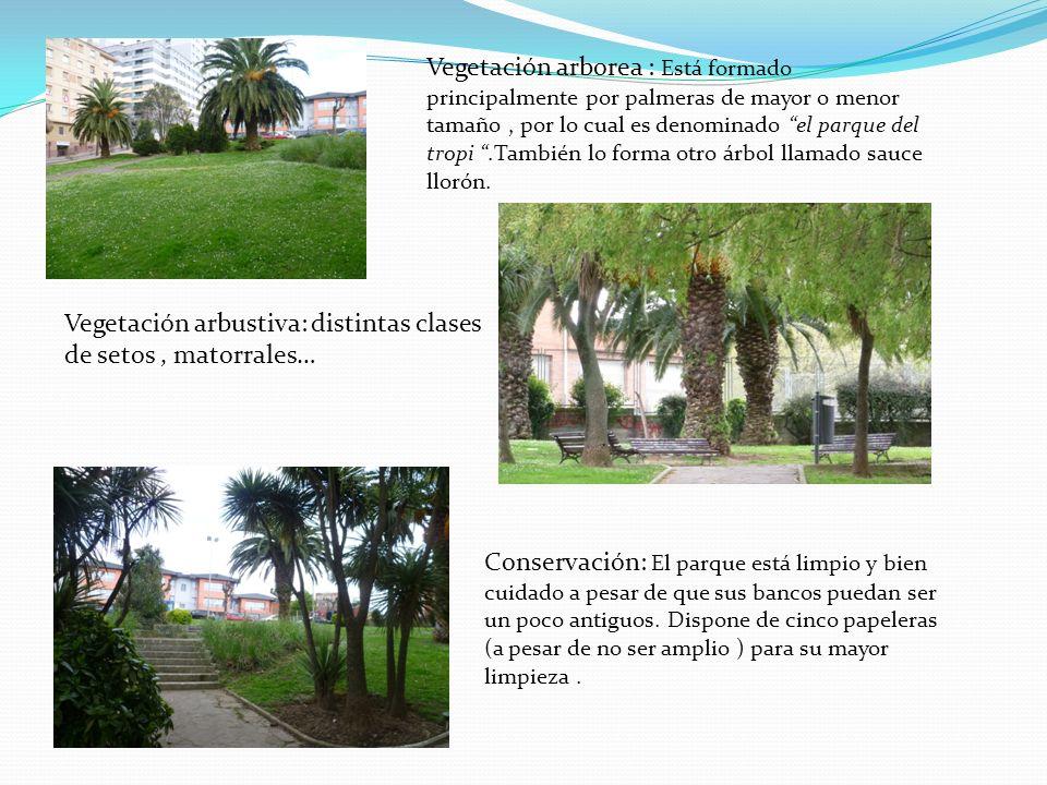 Vegetación arborea : Está formado principalmente por palmeras de mayor o menor tamaño , por lo cual es denominado el parque del tropi .También lo forma otro árbol llamado sauce llorón.