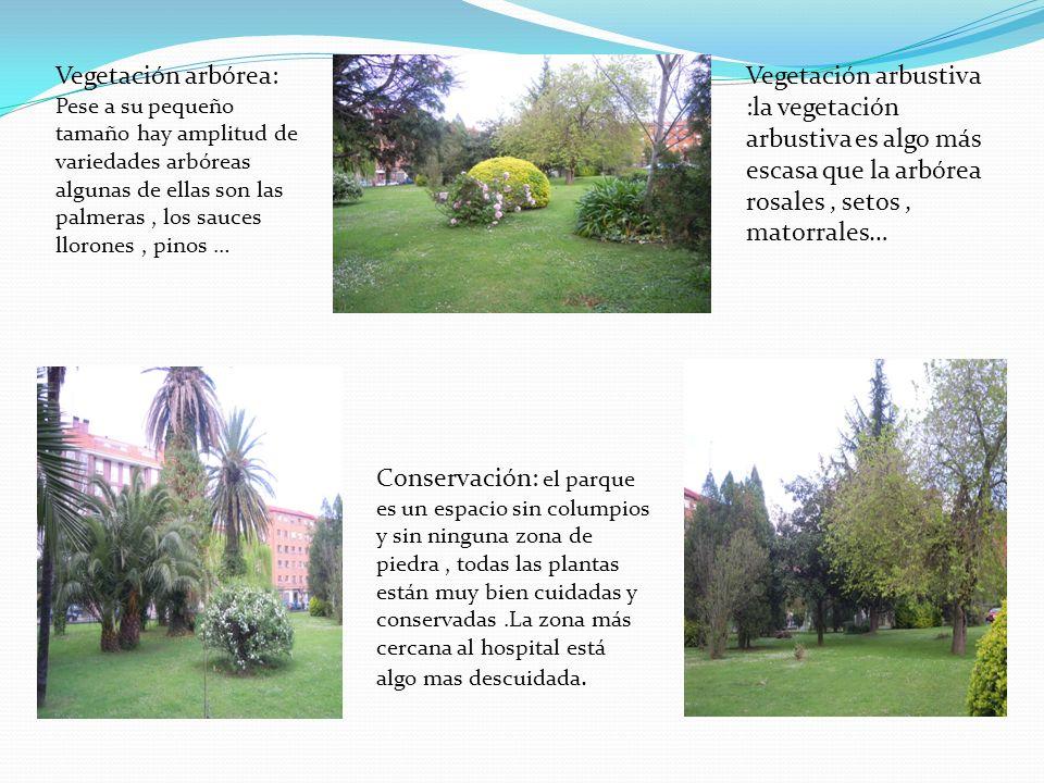 Vegetación arbórea: Pese a su pequeño tamaño hay amplitud de variedades arbóreas algunas de ellas son las palmeras , los sauces llorones , pinos …