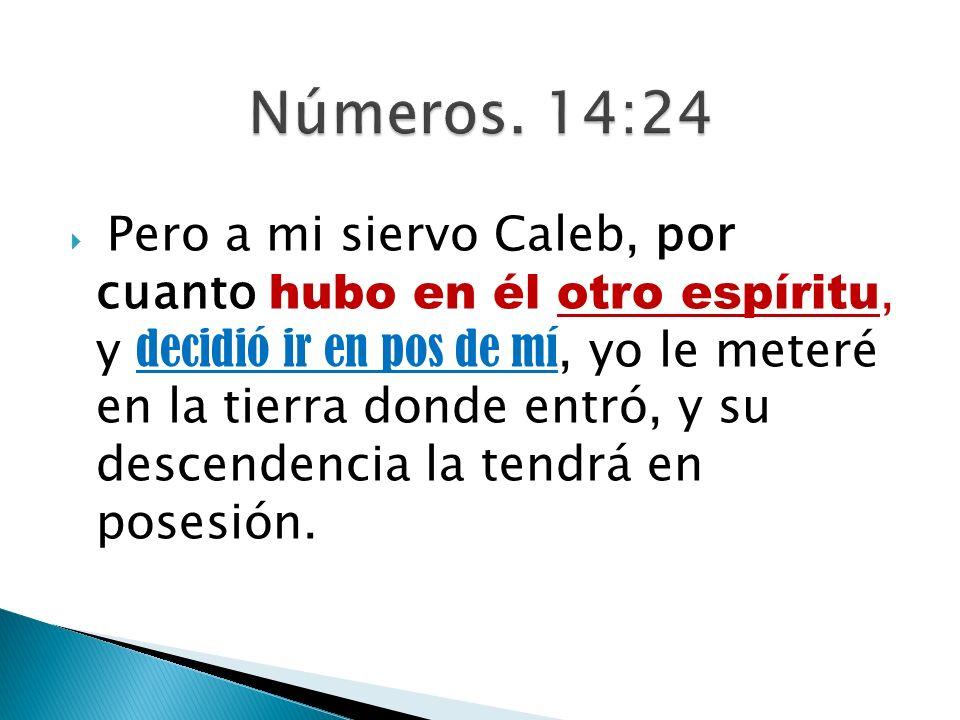 Números. 14:24