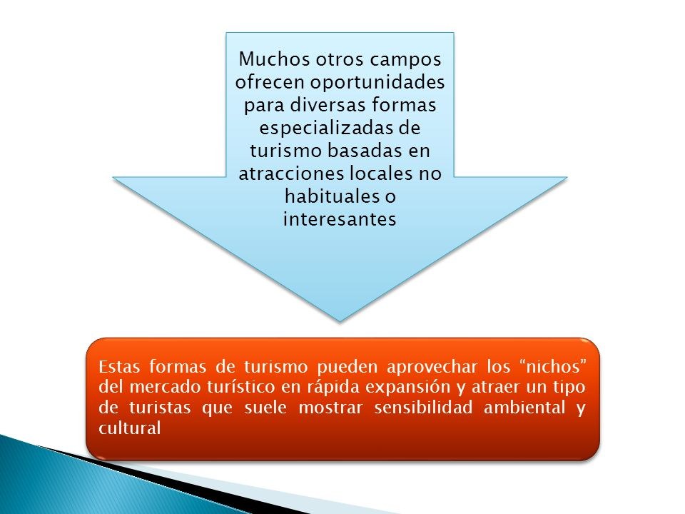 Muchos otros campos ofrecen oportunidades para diversas formas especializadas de turismo basadas en atracciones locales no habituales o interesantes