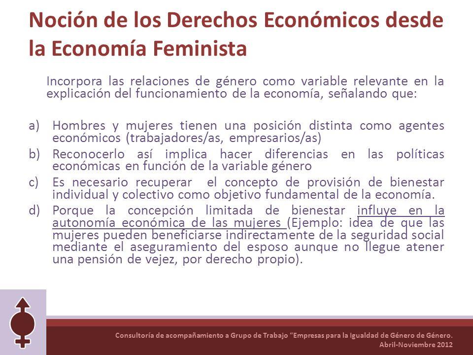 Noción de los Derechos Económicos desde la Economía Feminista