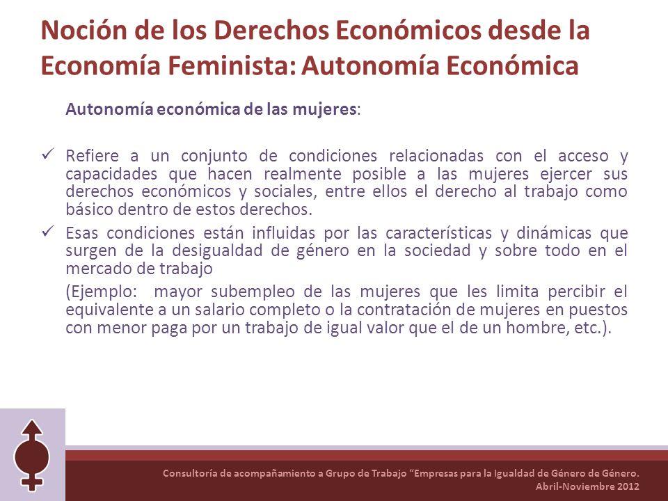 Noción de los Derechos Económicos desde la Economía Feminista: Autonomía Económica