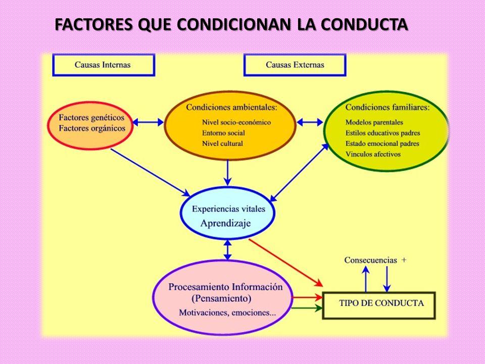 FACTORES QUE CONDICIONAN LA CONDUCTA