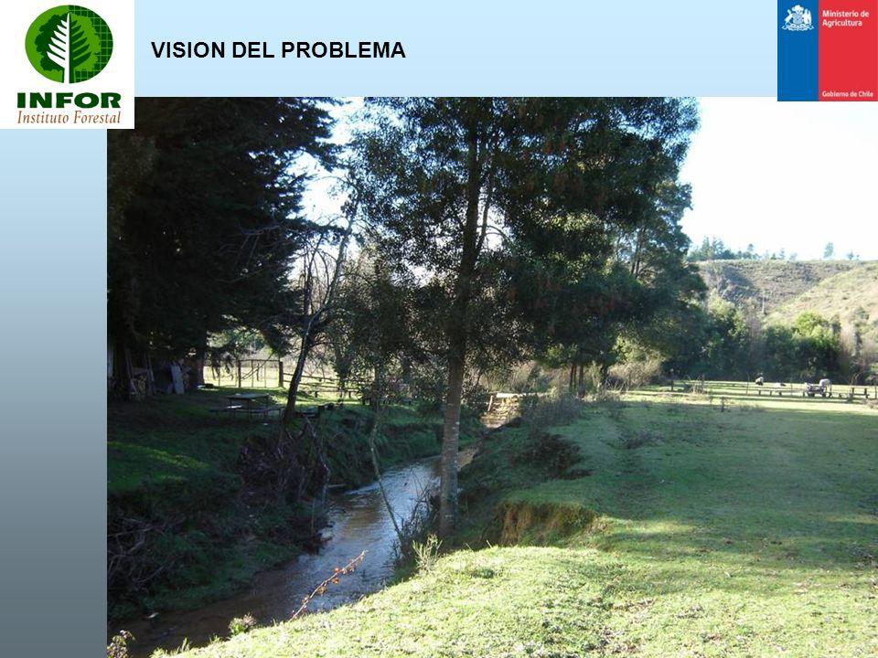 VISION DEL PROBLEMA