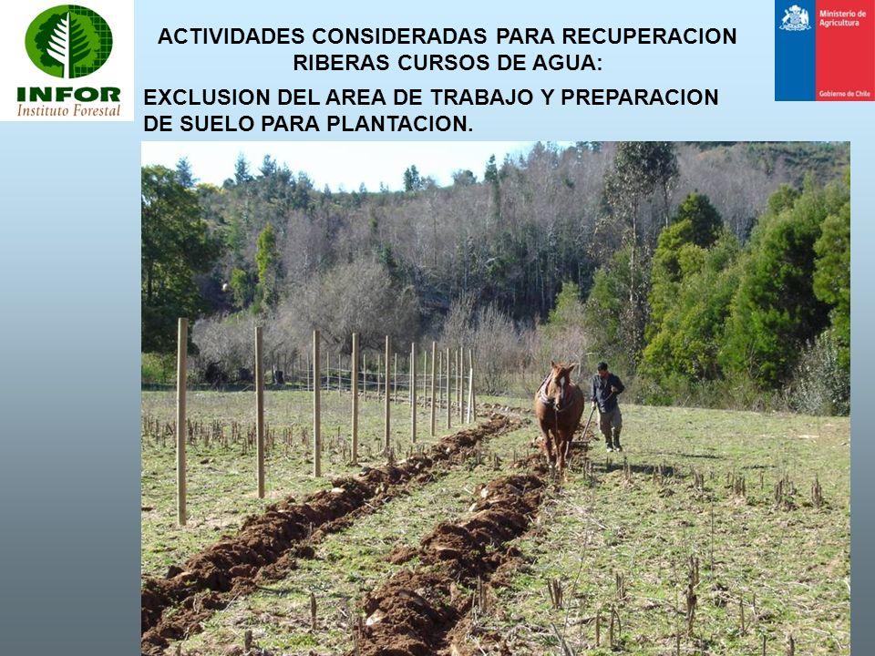 ACTIVIDADES CONSIDERADAS PARA RECUPERACION RIBERAS CURSOS DE AGUA:
