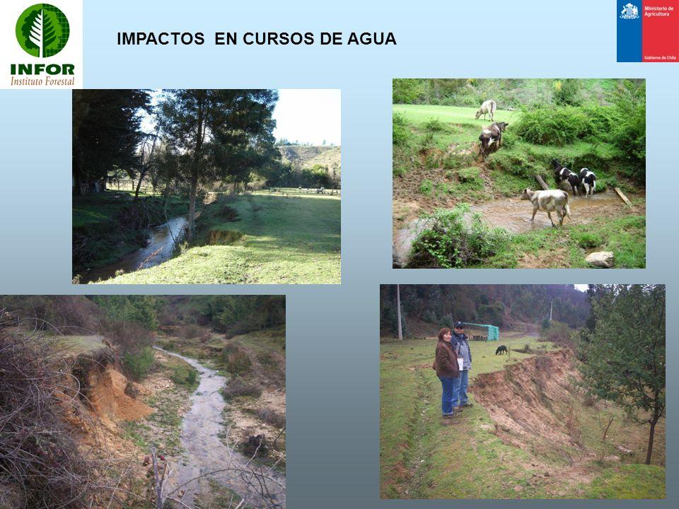 IMPACTOS EN CURSOS DE AGUA