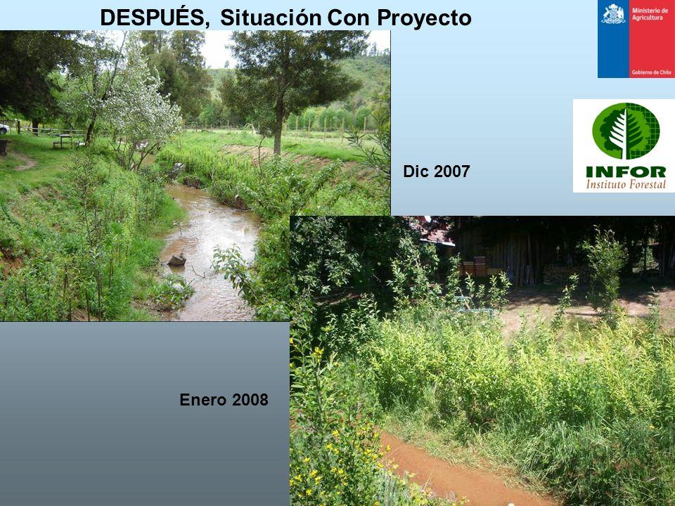 DESPUÉS, Situación Con Proyecto