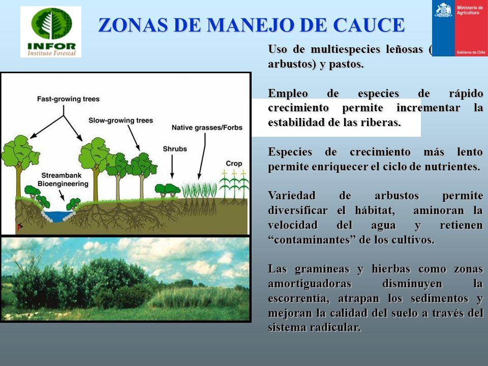 ZONAS DE MANEJO DE CAUCE