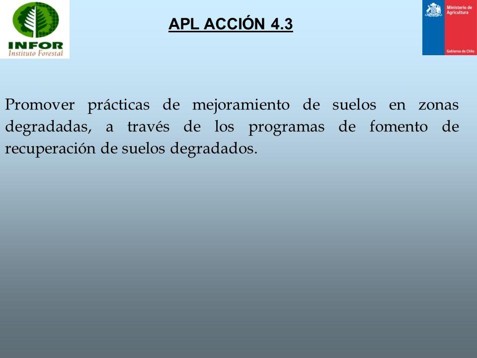 APL ACCIÓN 4.3
