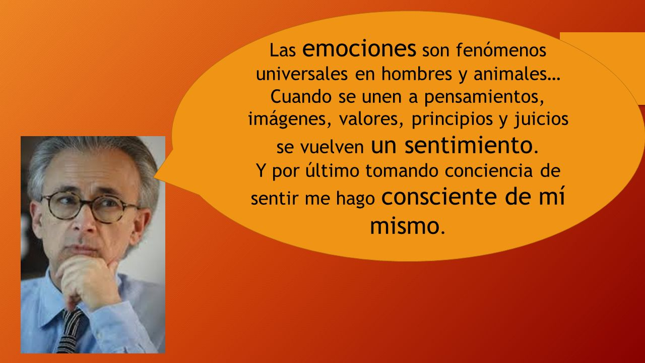 Las emociones son fenómenos universales en hombres y animales…