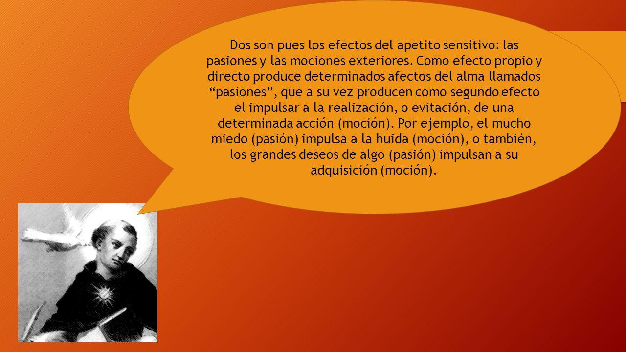 Dos son pues los efectos del apetito sensitivo: las pasiones y las mociones exteriores.