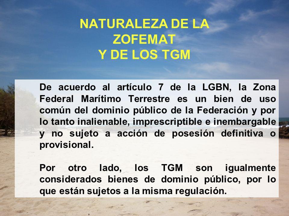 NATURALEZA DE LA ZOFEMAT Y DE LOS TGM