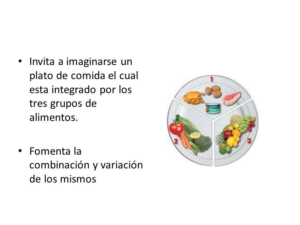 Invita a imaginarse un plato de comida el cual esta integrado por los tres grupos de alimentos.
