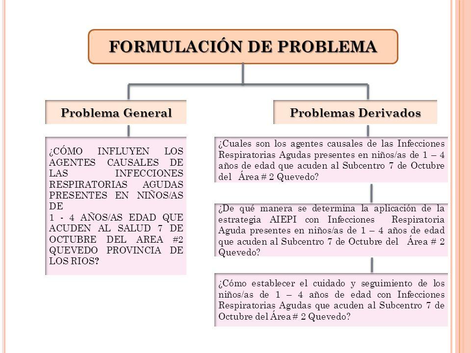 FORMULACIÓN DE PROBLEMA