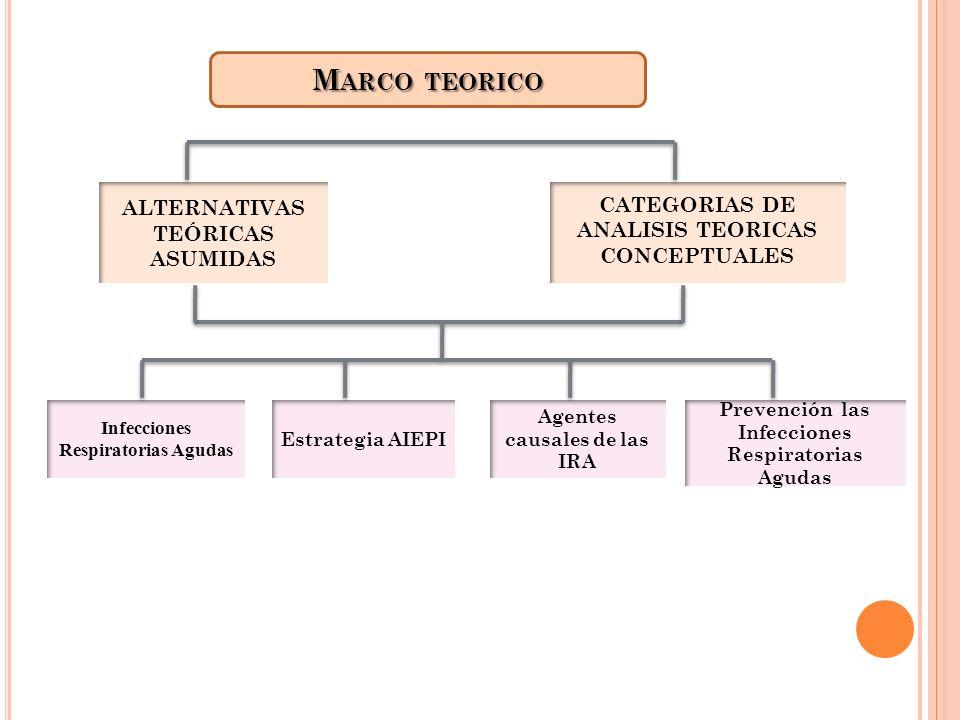 Marco teorico ALTERNATIVAS TEÓRICAS ASUMIDAS