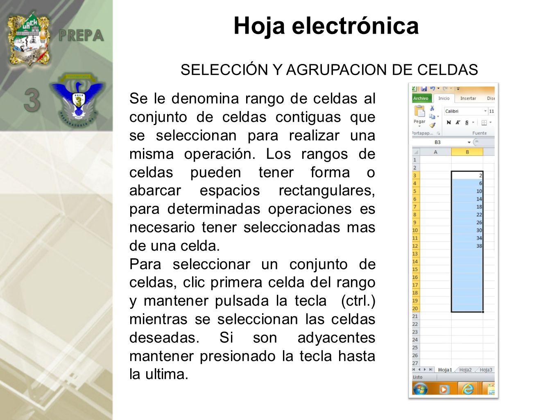 SELECCIÓN Y AGRUPACION DE CELDAS