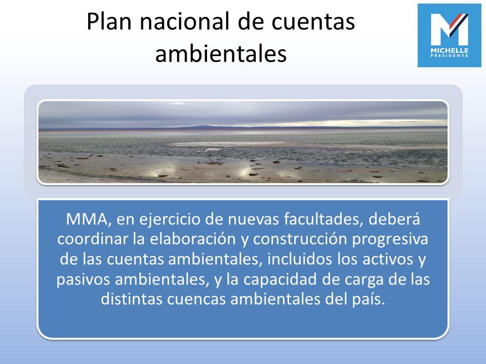 Plan nacional de cuentas ambientales
