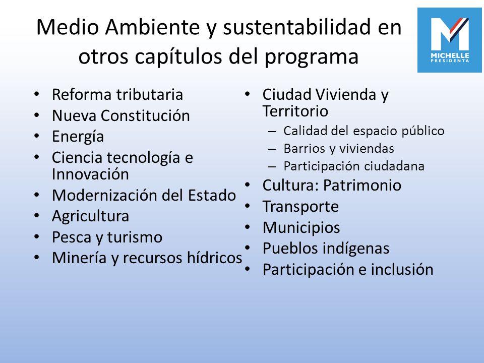 Medio Ambiente y sustentabilidad en otros capítulos del programa