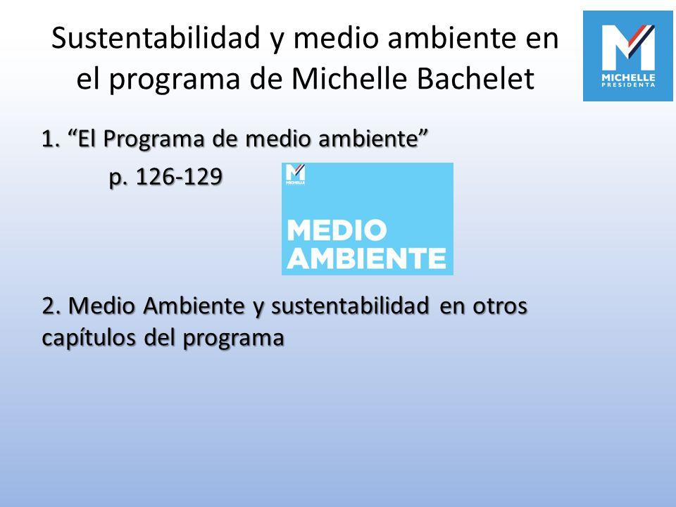 Sustentabilidad y medio ambiente en el programa de Michelle Bachelet