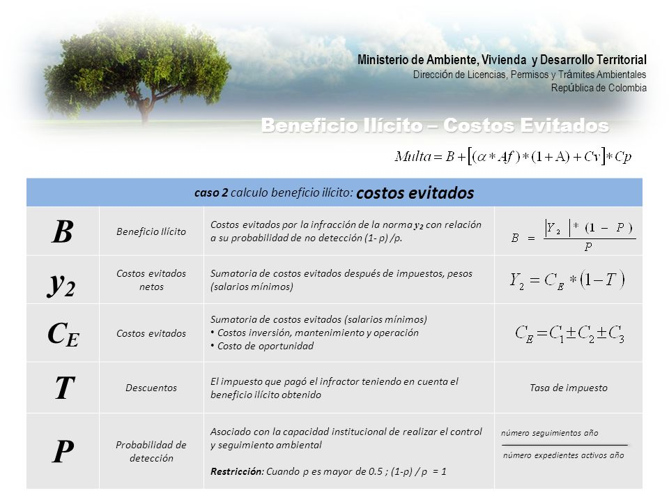 B y2 T P CE Beneficio Ilícito – Costos Evitados