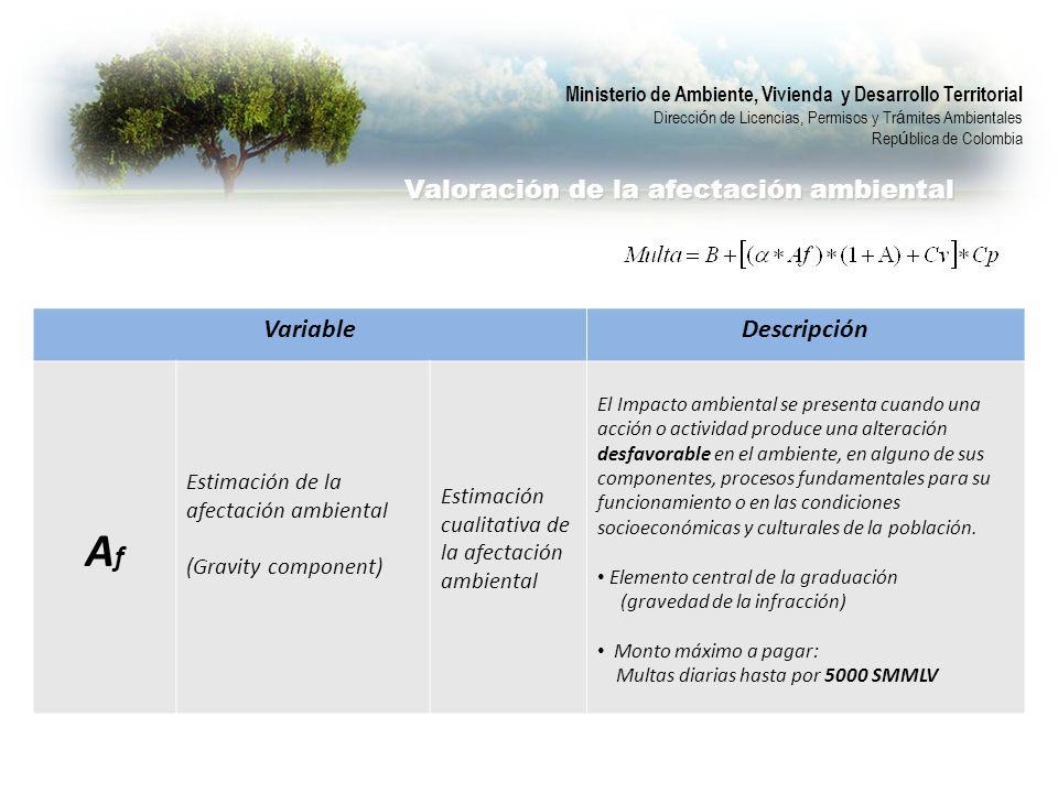 Valoración de la afectación ambiental