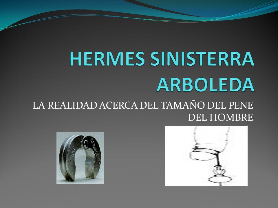 HERMES SINISTERRA ARBOLEDA
