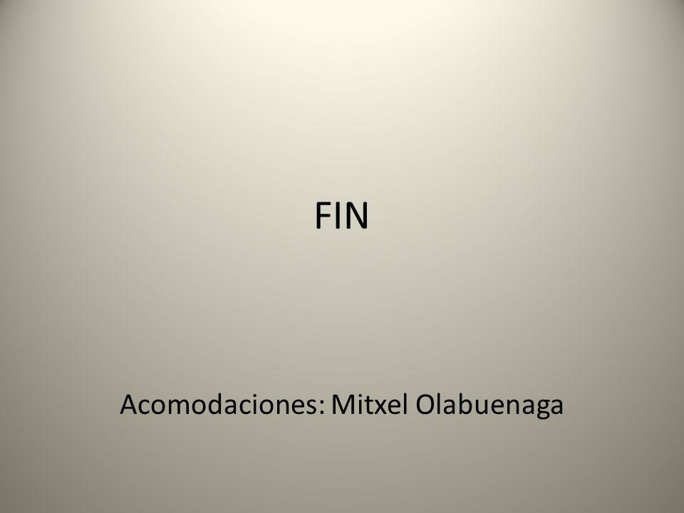 Acomodaciones: Mitxel Olabuenaga