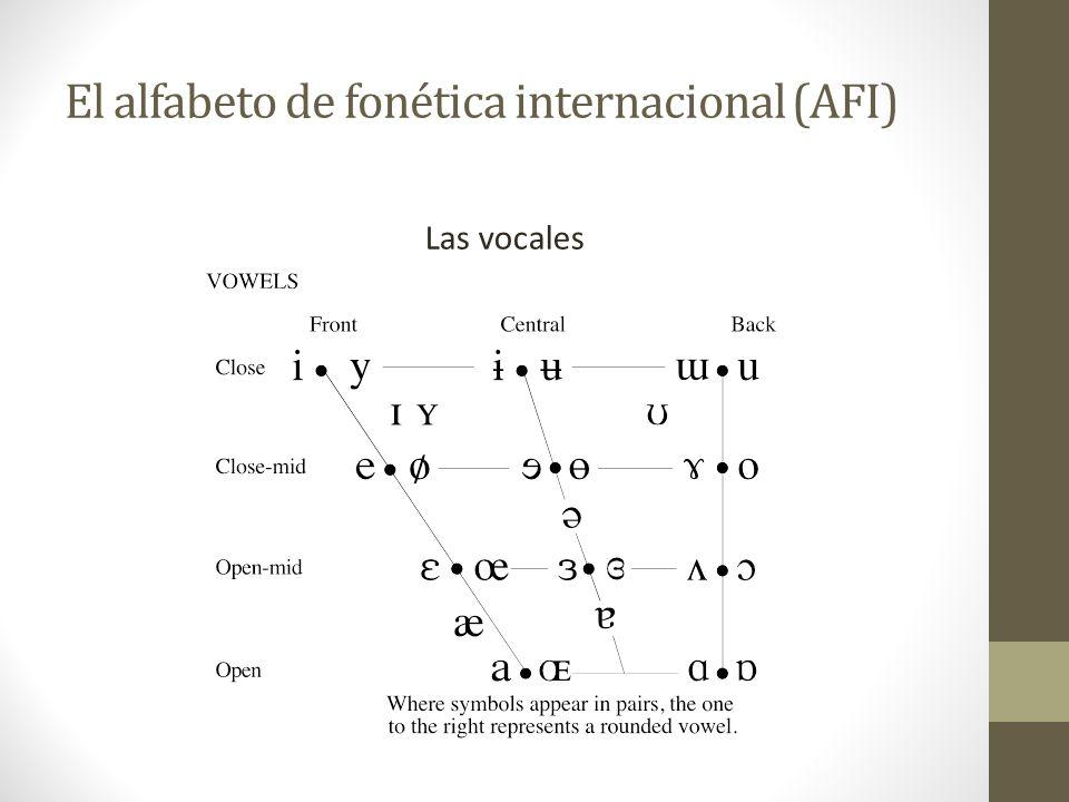El alfabeto de fonética internacional (AFI)