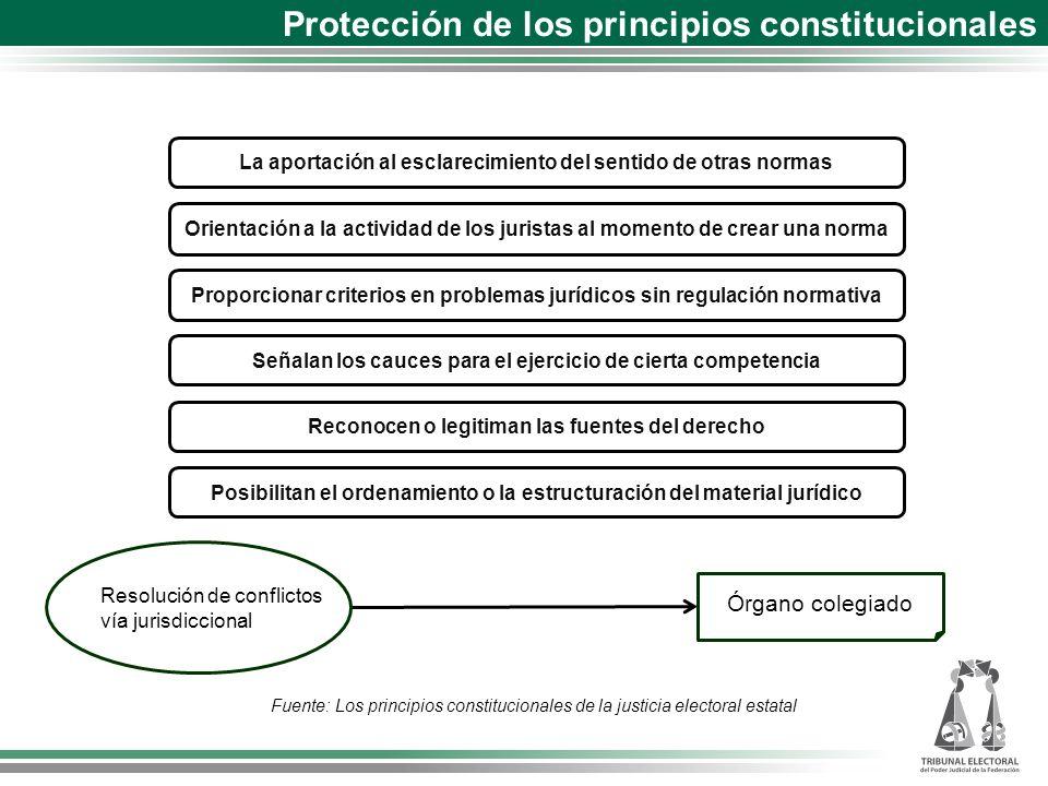 Protección de los principios constitucionales