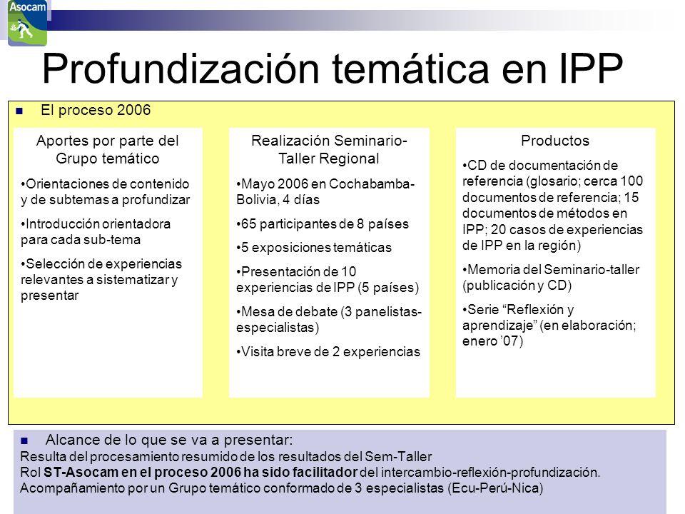 Profundización temática en IPP