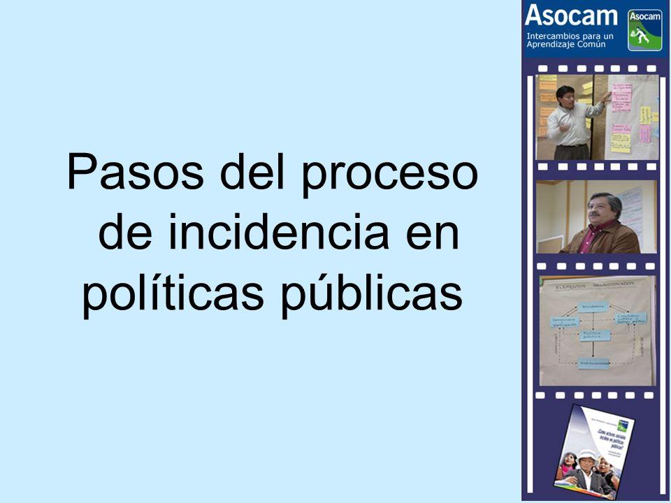 Pasos del proceso de incidencia en políticas públicas