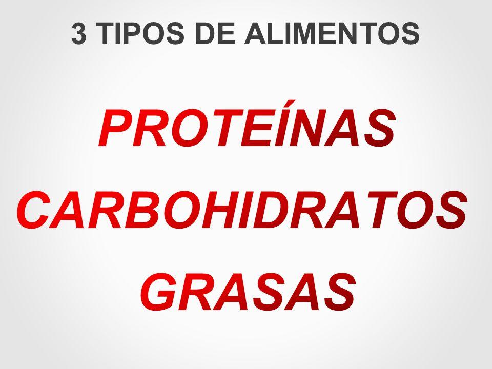 PROTEÍNAS CARBOHIDRATOS GRASAS