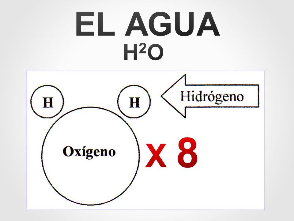EL AGUA H2O X 8