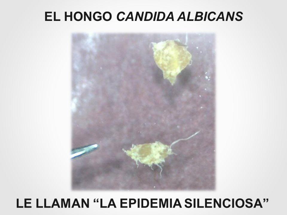 EL HONGO CANDIDA ALBICANS LE LLAMAN LA EPIDEMIA SILENCIOSA