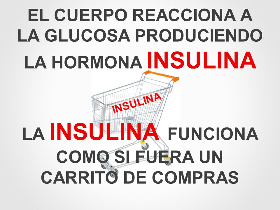 EL CUERPO REACCIONA A LA GLUCOSA PRODUCIENDO LA HORMONA INSULINA
