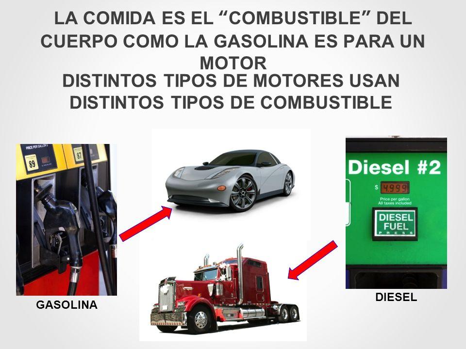 DISTINTOS TIPOS DE MOTORES USAN DISTINTOS TIPOS DE COMBUSTIBLE