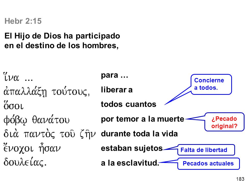 El Hijo de Dios ha participado en el destino de los hombres,