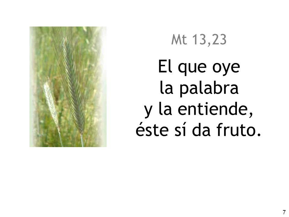 Mt 13,23 El que oye la palabra y la entiende, éste sí da fruto.