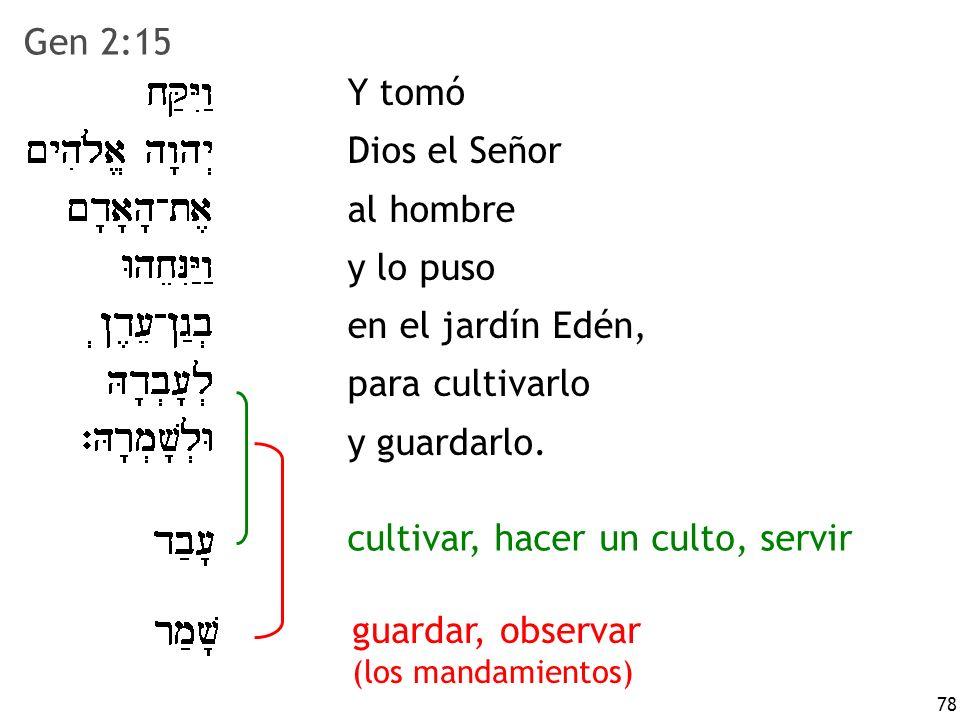 cultivar, hacer un culto, servir