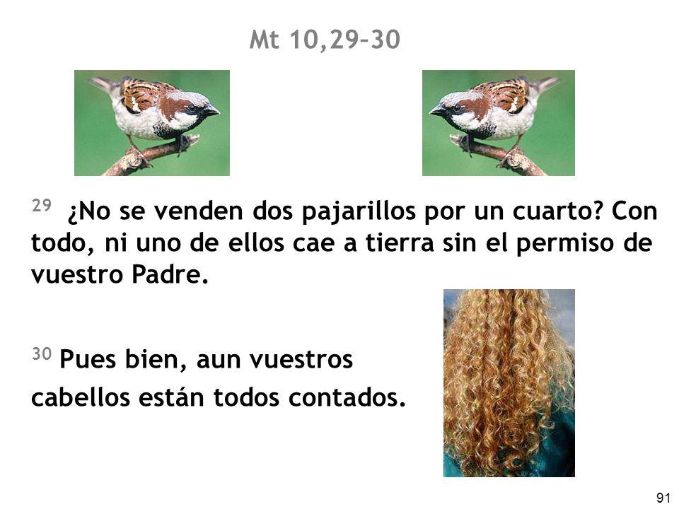 Mt 10,29–30 29 ¿No se venden dos pajarillos por un cuarto Con todo, ni uno de ellos cae a tierra sin el permiso de vuestro Padre.
