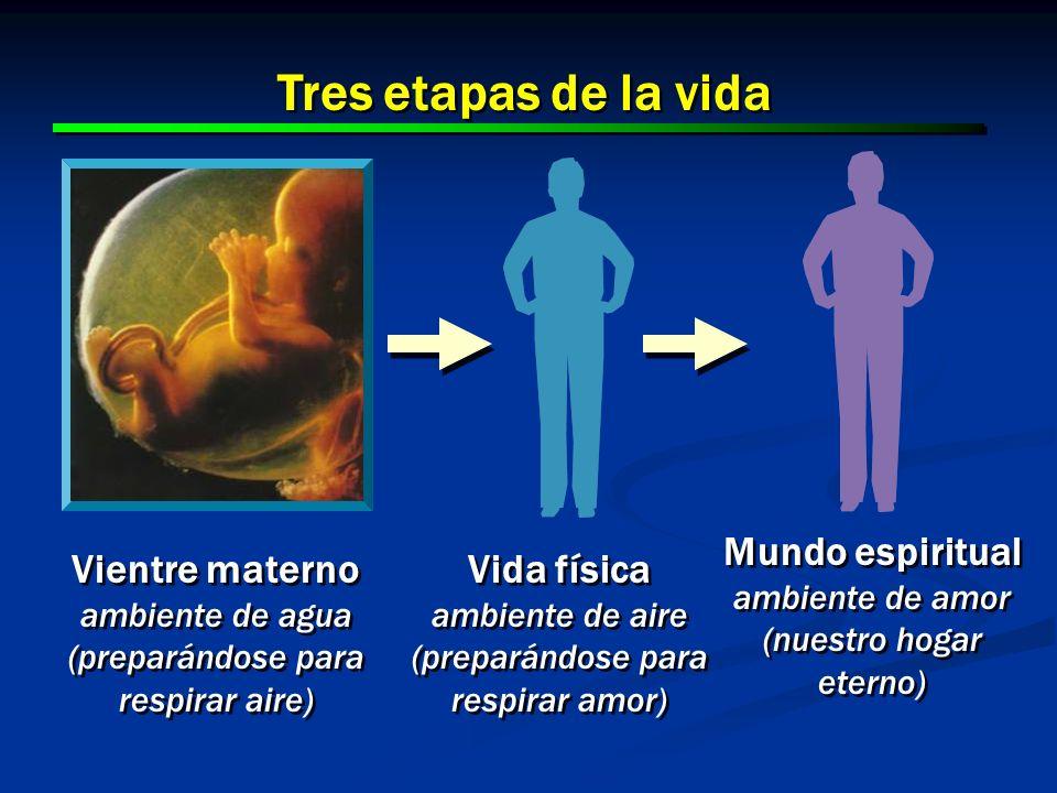 Tres etapas de la vida Mundo espiritual Vientre materno Vida física