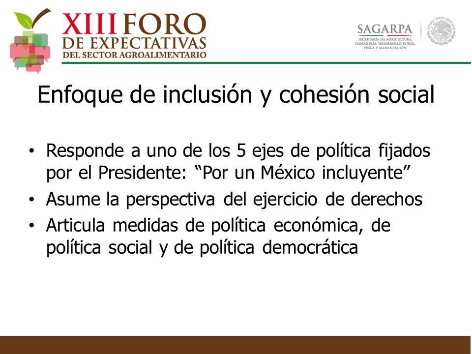 Enfoque de inclusión y cohesión social