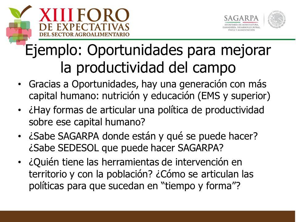 Ejemplo: Oportunidades para mejorar la productividad del campo