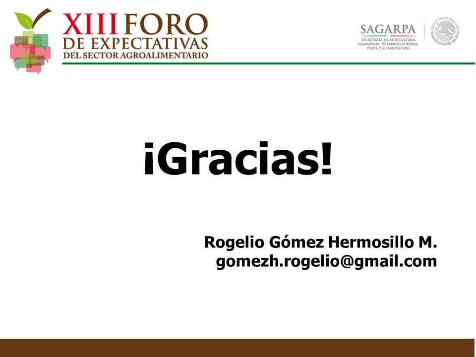 Rogelio Gómez Hermosillo M. gomezh.rogelio@gmail.com